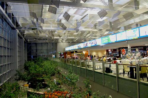 Singapore Changi Airport Food Court Garden