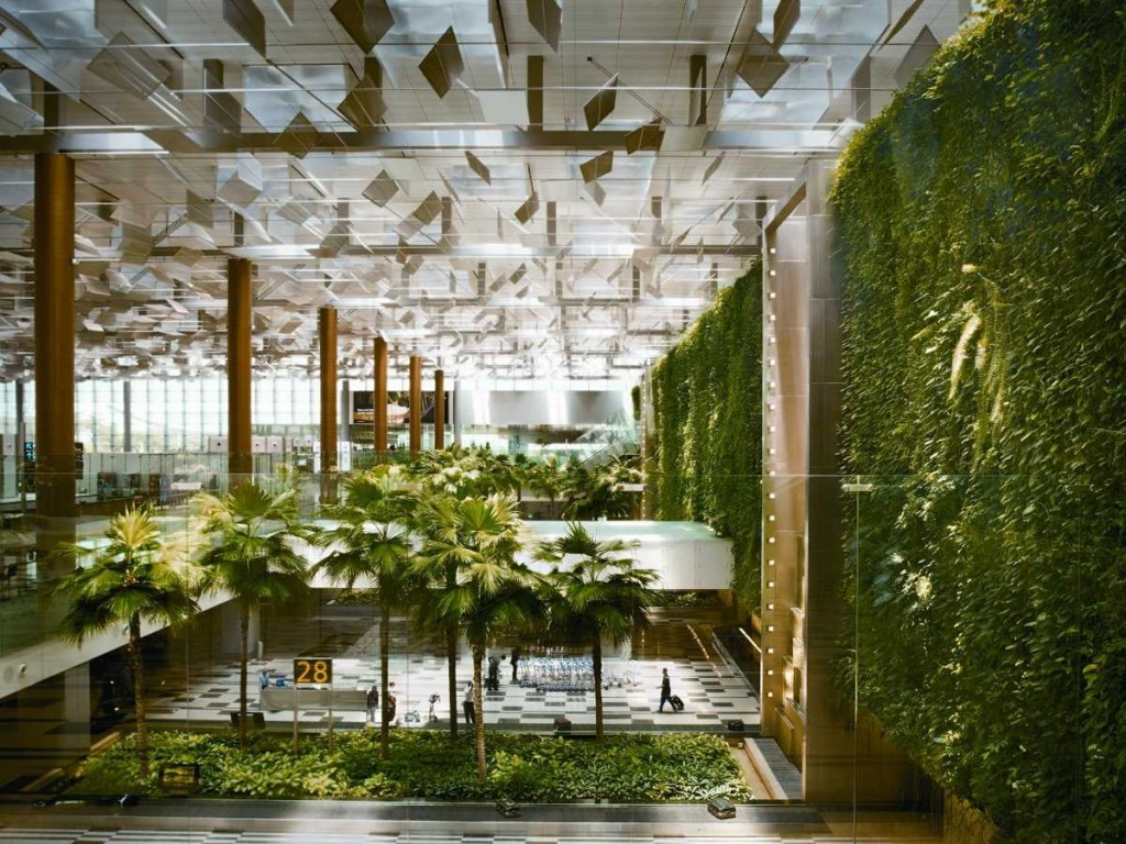 Singapore Changi Airport Green Wall