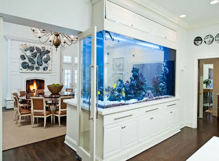 Home Aquarium by dining area (Demo)