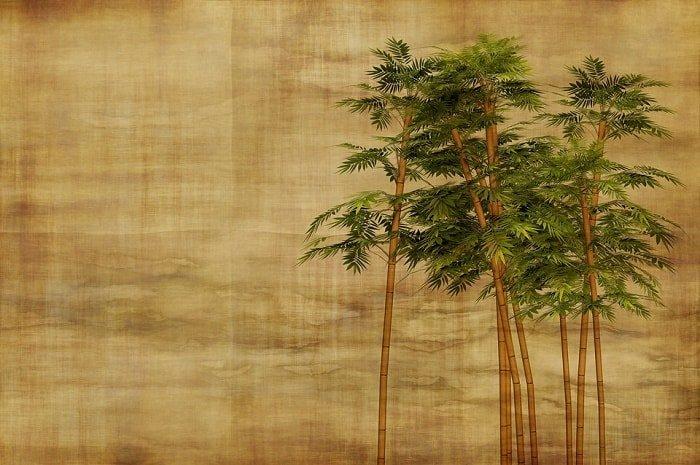 bamboo-drawing-feng shui-min (Demo)