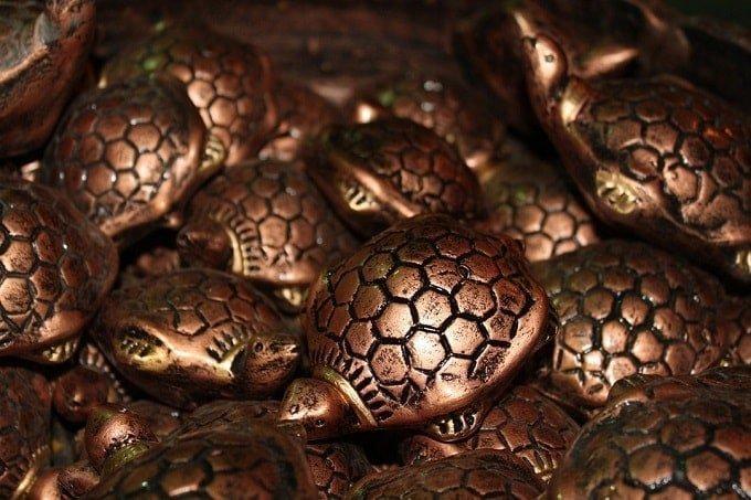 feng-shui-tortoise-item-cure-min (Demo)