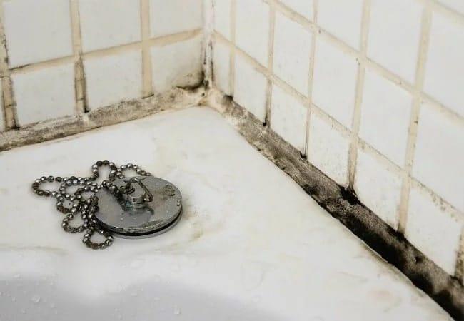 Black_Mold_in_modern Bathroom bad feng shui-min